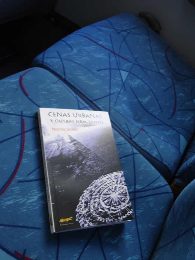 """Livro Perdido no """"Amarelinho""""."""