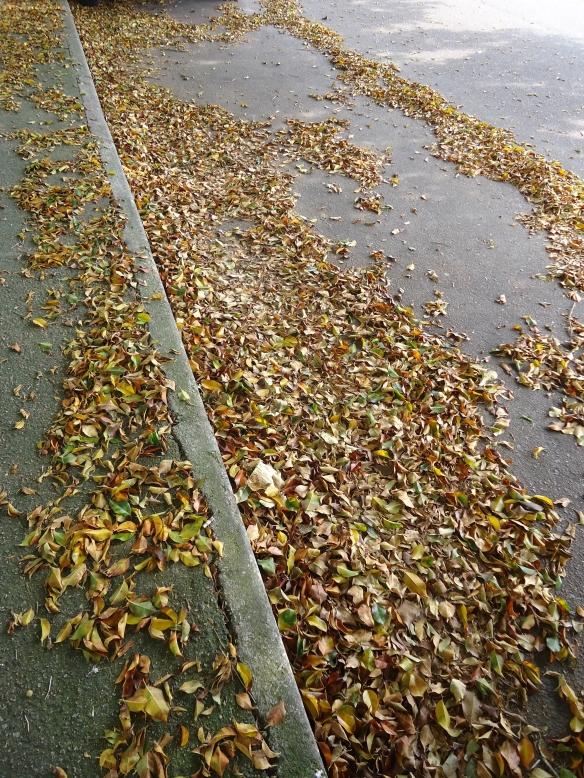 Promessa de Outono