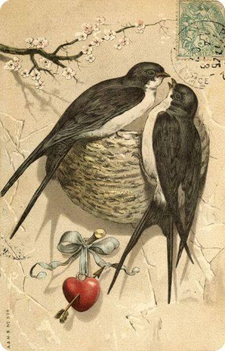Cartão antigo passarinhos